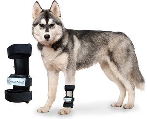 Carpal splint for pets