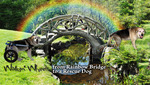 Walkin-Wheels-Rainbow-Bridge
