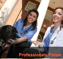 rehab professionals forum